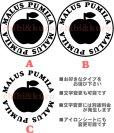 画像1: サイズが選べる&文字変更OK★オリジナルステンシル(りんごA) (1)