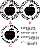 サイズが選べる&文字変更OK★オリジナルステンシル(りんごA)