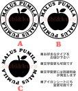 画像1: サイズが選べる&文字変更OK★オリジナルステンシル(りんごB) (1)